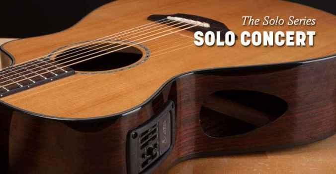 American Musical Breedlove Guitar Story